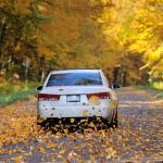 autumn car