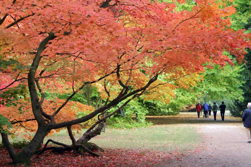 autumnscenicdrive2